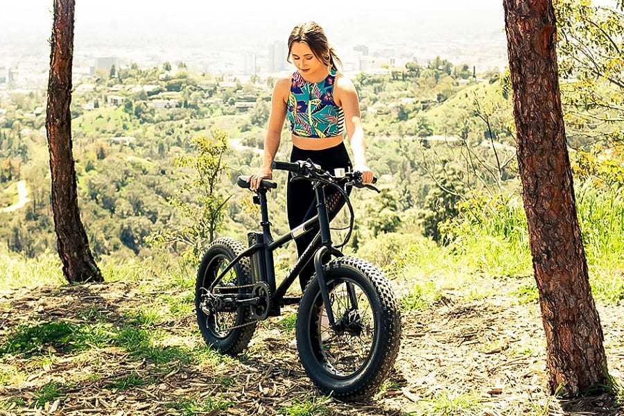 Best Folding Electric Bike For Every Budget