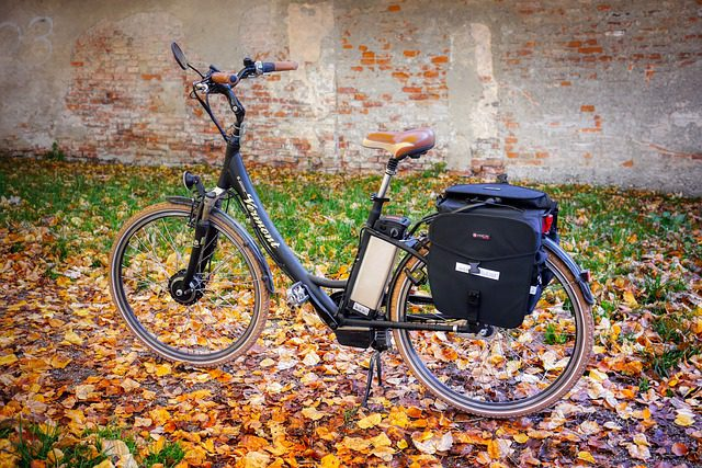 How To Make an Electric Bike with A Starter Motor